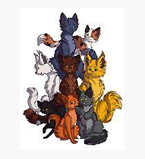 Kriegerkatzen feiern Fotodruck