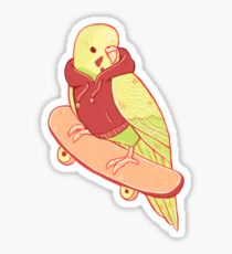 Orange and Green Coo Bird Sticker