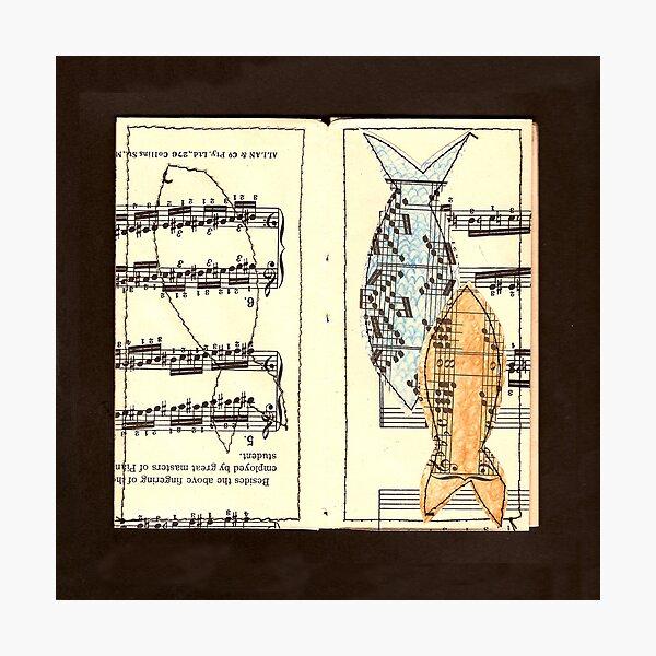 Fish above fingering Photographic Print