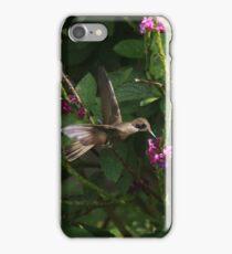 Hummingbird Macro iPhone Case/Skin