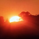 Tuscan Sun Goes Down by UrsulaDee