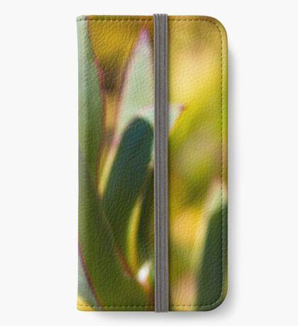 Winters Cactus iPhone Wallet