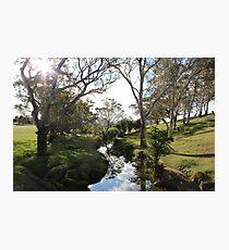 Williams Road, Mount Barker, South Australia Photographic Print