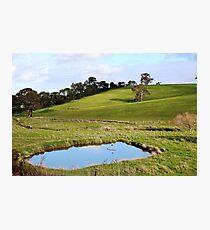Flaxley, South Australia Photographic Print