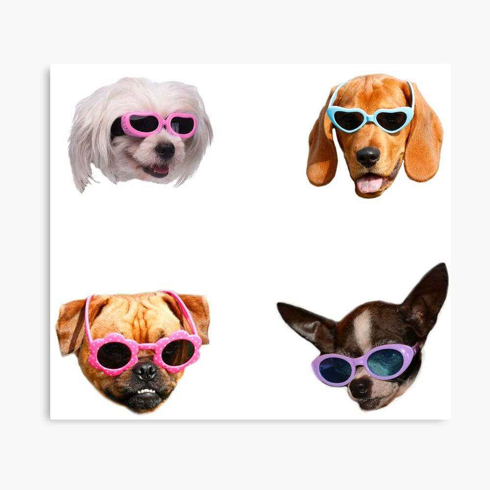 Pegatinas Doggo: Gafas De Sol # 4 Lienzo