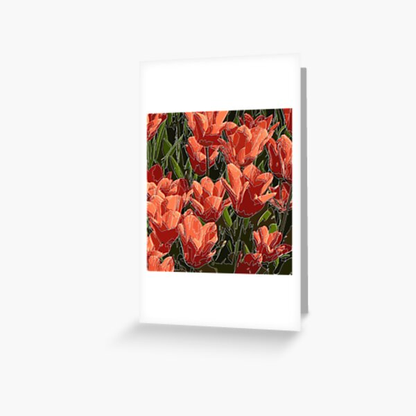 red tulips white lines Greeting Card