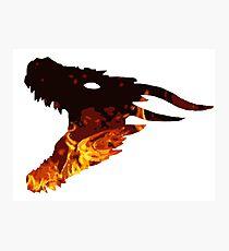 fire dragon  Photographic Print