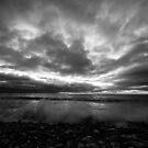 Dark Skies by Anita Harris