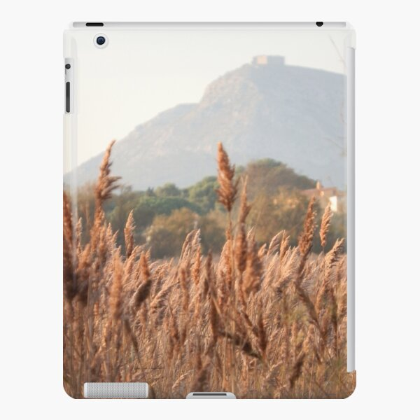 Reeds and Montgri iPad Snap Case