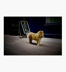 Soho,London(lomo-lca)  Photographic Print
