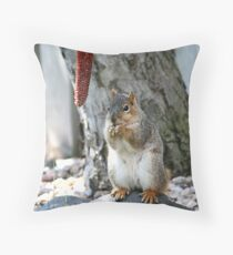 Squirrel Snacks Throw Pillow