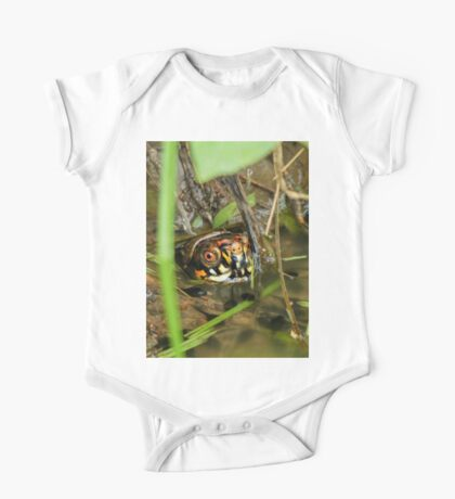 Box Turtle and Tadpoles Kids Clothes