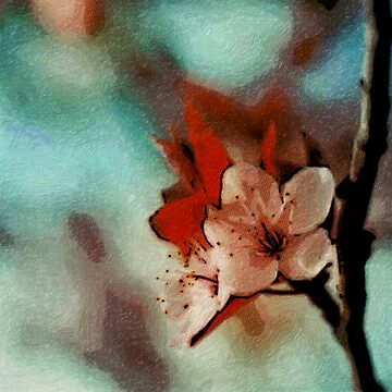 Blossoms by nekokun