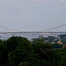 Verrazano Narrows Bridge  by Edward Mahala