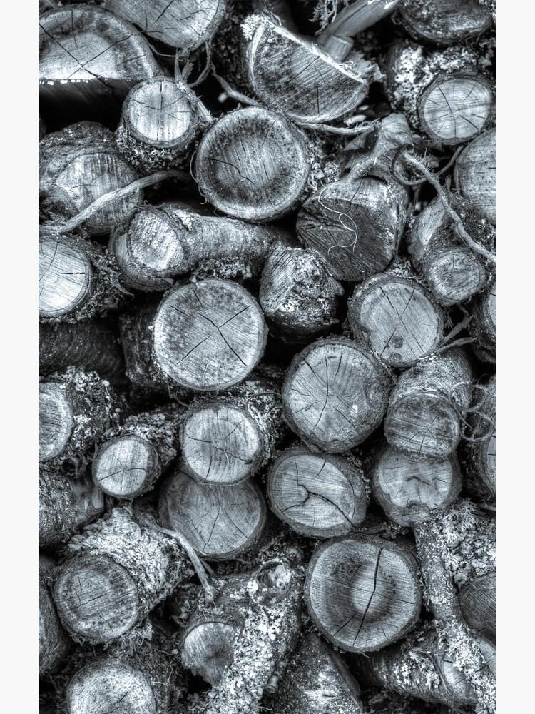 Wood pile by plasticflower