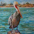 Pelican by HDPotwin