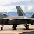 F-22 Raptor by Jess Fleming