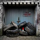 No Parking by Anita Harris