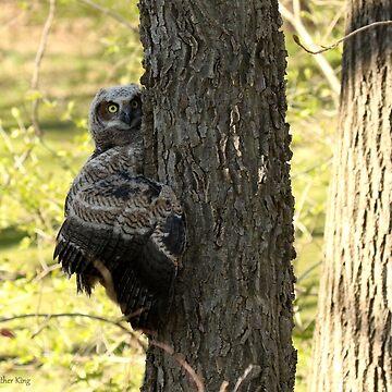Tree Hugger by locustgirl