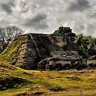 Altun Ha, Belize by Andreas Mueller