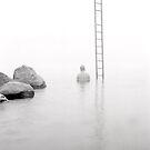 ladder - 12 by Stephen Sheffield