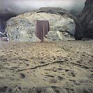 rock blanket - 3 by Stephen Sheffield