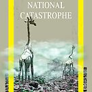National catastrophe by Solodov Art