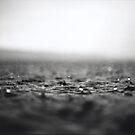 Rain 2 by Stephen Sheffield
