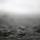 Rain 3 by Stephen Sheffield