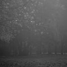 River Street, Fog by Mike Emmett