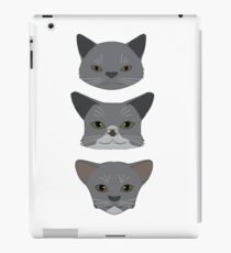 There are Three kinds of Cats... iPad Case/Skin