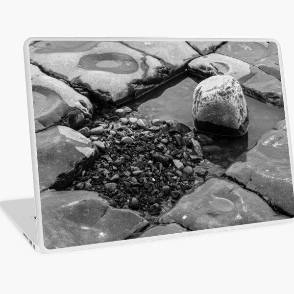 Rock Pool Laptop Skin