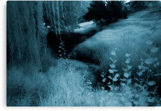 blue day... river of dreams river of tears by Juilee  Pryor