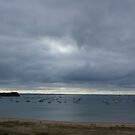 Storm Looming - Blairgowrie Yacht Club by wilsonsz