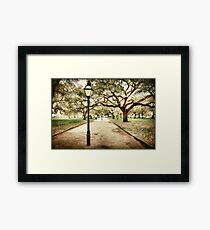 Charleston Battery Park in South Carolina Framed Print