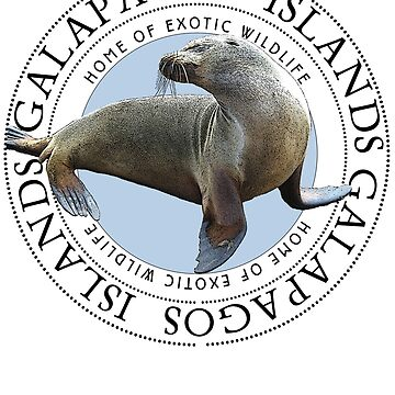 Galapagos Islands Sea Lion by Zehda