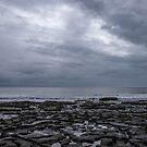 Coast II by Anita Harris