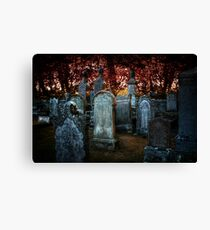 Turned to stone Canvas Print