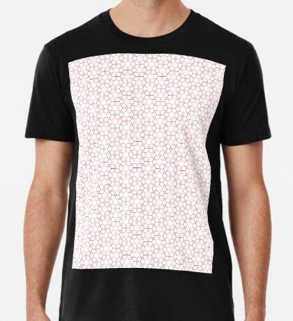 Variation on the Esrefoglu Mosque Premium T-Shirt
