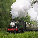 Dean Forest Railway by Stephen Liptrot