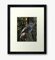 This is NOT comfortable Framed Print