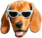 Cool Doggo #1 by Elisecv