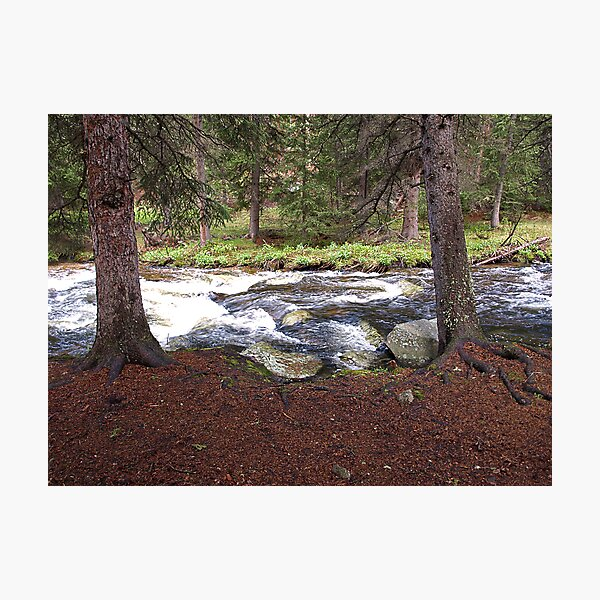 Beside the Clear Creek Photographic Print