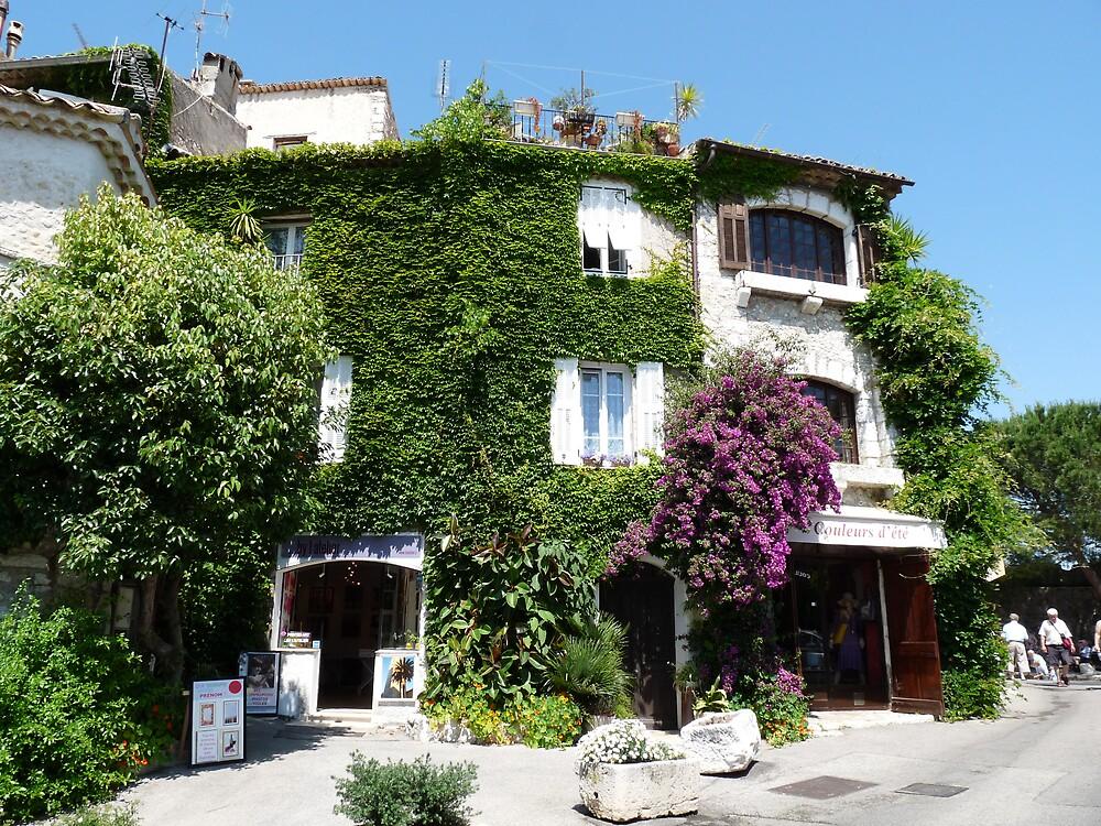 Saint-Paul de Vence - Flowered house  by presbi
