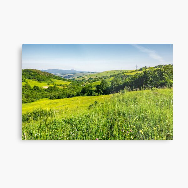 lovely mountainous countryside in summertime Metal Print