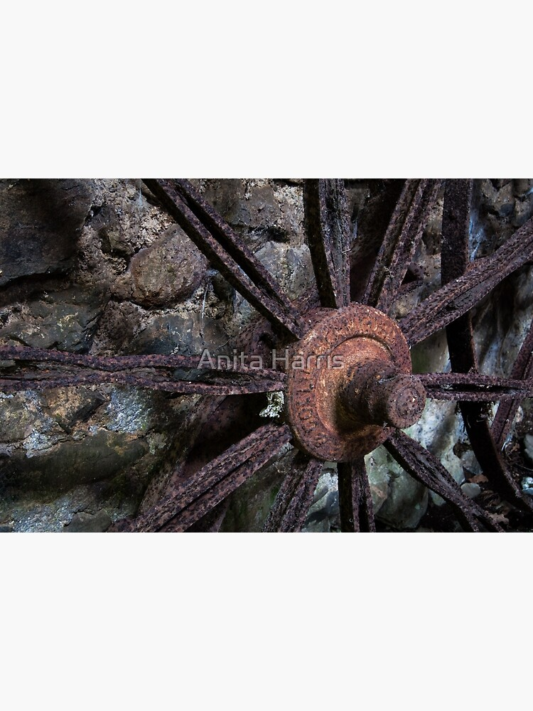 Wheel by plasticflower