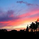 Kauai Sunset by BonnieColeman
