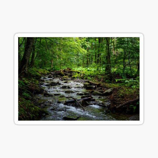 wild brook in the dark forest Sticker