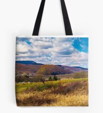 panorama of mountainous rural area in springtime Tote Bag