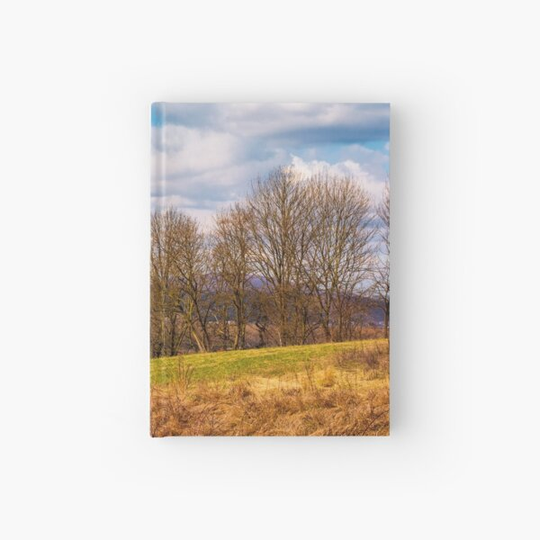 orchard in mountainous rural area Hardcover Journal